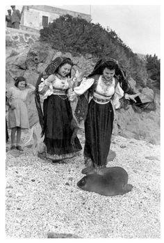 Donne di Dorgali con un esemplare di foca monaca.