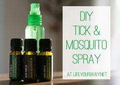 DIY Tick & Mosquito Spray at lifeyourway.net