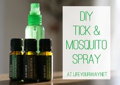 DIY Tick and Mosquito spray