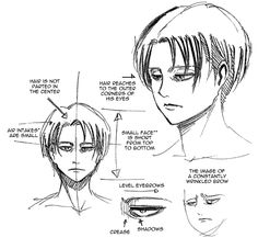 """cosmocall: """" Translated a few notes on Levi's mug from Shingeki no Kyojin: OUTSIDE Kou. """" *Air intakes (エアインテーク) were a new concept to me; they're where the bangs stick up slightly from the hairline..."""