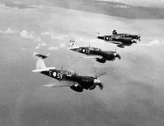 """jcaviation: """" Curtiss P-40M kittyhawk , 76°squadron RAAF New-Guinea 1943/44.…"""