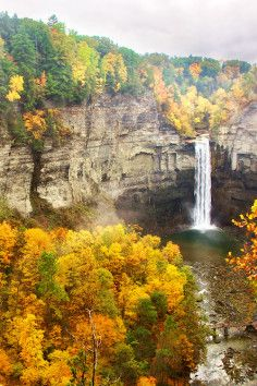 Taughannock Falls State Park is a State Park in Trumansburg. Plan your road trip to Taughannock Falls State Park in NY with Roadtrippers. State Parks, Les Cascades, All Nature, Amazing Nature, Lake George, Beautiful Waterfalls, Picnic Area, Vacation Trips, Vacation Ideas