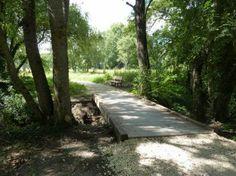Les Prairies du Roy entre Loches et Beaulieu-Lès-Loches (37)