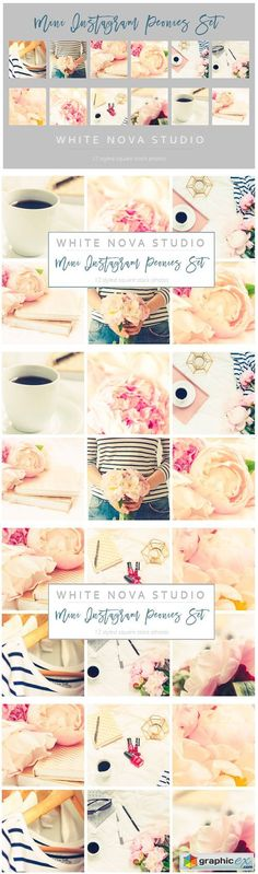 Mini Instagram Peonies Set  stock images