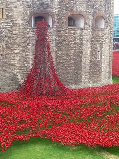 Tower of London poppies Breathtaking sight