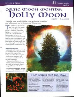 Enhancing Mind Body Spirit  21 Nature Magic Card 12 Celtic Moon Months: Holly Moon