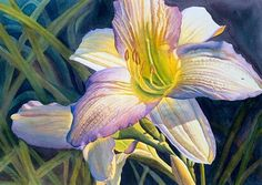Daylily Illumination by Cathy Hillegas Watercolor ~ 18 x 24