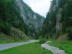 peisaje-munte-romania-muntii-carpati-22.jpg (1024×768)