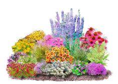Set: Beet & Balkonpflanze »4-Jahreszeiten« (16-tlg.) für 34,99€. 4-Jahreszeiten-Set, Standort: Sonne - Halbschatten, Geeignet für: Beet bei OTTO