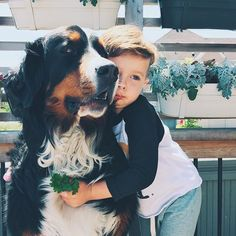 I love to see happy, respectful relationships between dogs and children Look at the relaxed face on that dog—relaxed, open mouth, soft eyes, relaxed ears. :)
