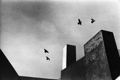 René Burri. Mexico 1969 Casa Estudio Barragán