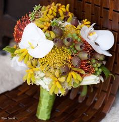 Safari bouquet with pincushions, orchids, kangaroo paw.