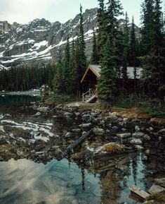 Cabin Fever Forest Cabin, Forest House, Yoho National Park, National Parks, Ideas De Cabina, Lakeside Cabin, Cabin In The Woods, Little Cabin, Cabins And Cottages