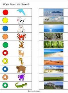 Deze knijpkaart en nog veel meer in de categorie woordenschat kun je downloaden op de website van Juf Milou. Busy Boxes, Learning Environments, Preschool, Acer, Circuit, Image, Cousins, Exercises, Animales
