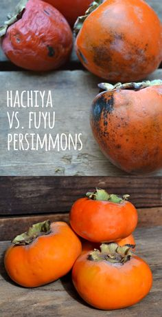Persimmons are such a fun fruit we look forward to every year, but knowing the differences between the two main types (Hachiya and Fuyu) is key. Fuyu persimmons are best for eating like an apple and have a unique flavor, spicy sweet with hints of tropical flavors. Some even say they can sometimes detect a hint of cinnamon!  Join Farm Fresh To You and delight your family with organic fruits and vegetables delivered right to your doorstep!