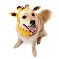Knit Dog Hat Zoo Snood - Giraffe