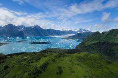 Vista aérea a los alrededores del parque nacional de los fiordos de Kenai Alaska. Esa esa la bahía de la Resurección (Resurrection Bay). Fot.: Toby Harriman #paisaje #landscape #naturaleza #nature #parque #nacional #national #park #kenai #alaska #bahia #bay #resurrection