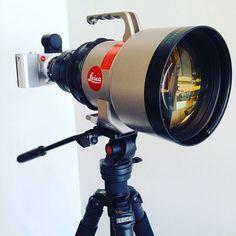 Need a close-up shot? No big deal  Photo by @superphilnomenal #Leica #LeicaT #cameraporn #leica #leicacamera #lensporn #gearporn