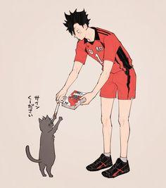 黒と猫かわいい