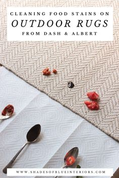How to clean any food stain off of Dash & Albert Indoor/Outdoor Rugs by Annie Selke.