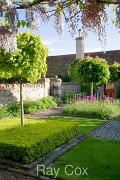 Ray Cox | Garden Photographer's Association
