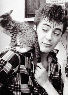Porque todos tenemos una foto con un gato Robert Downey Jr