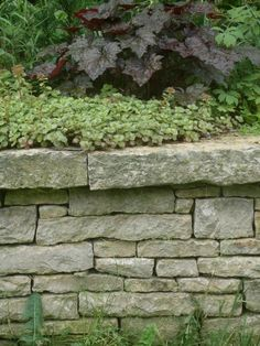 Picture: Garden wall provided by Hawthorn Masonry Decorah, IA 52101 Garden Retaining Wall, Landscaping Retaining Walls, Backyard Landscaping, House Landscape, Landscape Walls, Rock Garden Plants, Garden Walls, Natural Stone Wall, Garden Trellis