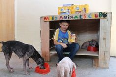 Nine-Year-Old Boy Creates Animal Shelter For Three Homeless Dogs