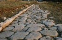 Roma: ritrovato cadavere di uomo con mani legate