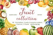 Watercolor fruit collection. - Graphics - 1