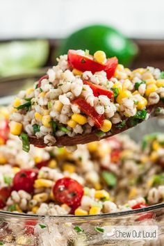 This Tex-Mex Barley Salad has all the Southwestern flavors you love. Zesty lime, cilantro, and plenty of flavorful seasonings make it healthy and delish!