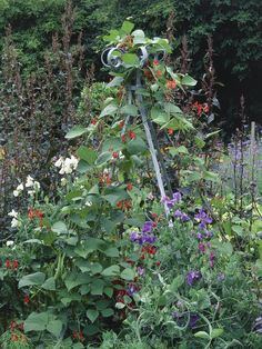 Rustic Obelisk: Add height to a small garden with a rustic obelisk. From HGTV.com's Garden Galleries