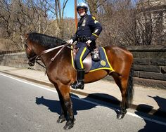 NYPD Mounted Police Officer