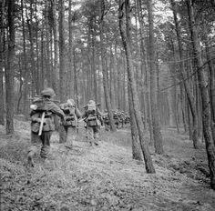 Infantry advance through the Reichswald during Operation 'Veritable', 8 February 1945.
