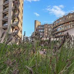 The Barbican, City of London. Shot by @loveandlondon  #Regram via @www.instagram.com/p/CBnodqpiW2S/ London Tips, London Museums, Barbican, London Travel, British Museum, Travel Guide, Grass, Plant, Clouds