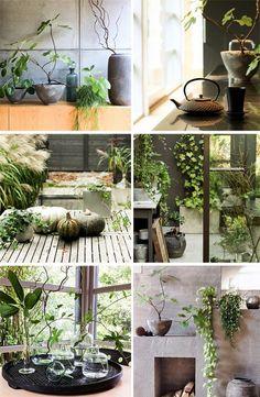 Purple Area: Hemma hos mig/trädgård
