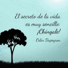 El secreto de la vida... Odin Dupeyron.