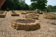 A different twist on raised beds and strawbale gardening.