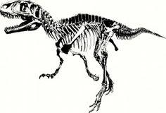 Dinosaur Skeleton Wall Sticker