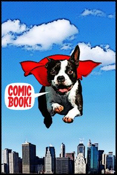 ComicBook! ($1.99) ComicBook! is your FULL featured comic book creation app!    In just seconds turn yourself and your friends into comic heroes or villains. Star in your own comic book adventures!    Realistic comic styling with a wide selection of: image filters, comic fonts, customizable captions, a library of classic comic graphics and dozens of multi-panel page layouts.