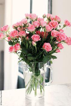 Pink Mini Roses in My Apartment