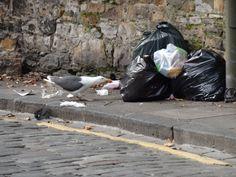 Mein (fast) plastikfreies Leben – Wieso, weshalb, warum: Leben ohne Plastik – wie soll das denn gehen? Diese Frage wurde mir in den vergangenen zwölf Monaten...