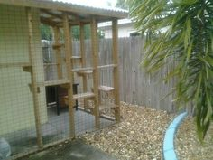 A wrap around porch style outdoor enclosure idea that would work for fennec foxes!