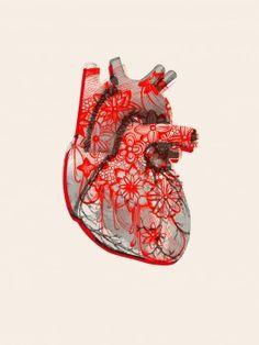 Art Causa Heart Vs Mind, Heart Art, My Heart, Anatomically Correct Heart, Anatomical Heart, Heart Images, Dream Tattoos, Human Heart, Anatomy Art