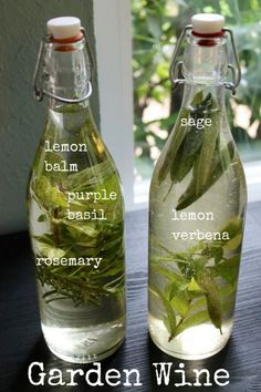 Garden Wine-I grabbed herbs from my garden – sage, rosemary, lemon balm, purple basil, and lemon verbena. Alcoholic Drinks, Beverages, Cocktails, Manger Healthy, Smoothies, Kitchen Witchery, Beltane, Wine Making, Home Brewing