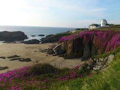 Está muy cerquita y es precioso ??????...Tapia de Casariego #Asturias http://blgs.co/-F0k97