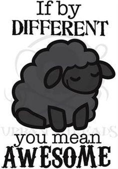 black sheep - Google Search