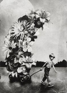 ARTFINDER: The Boy and The Flowers by Jaco Putker - -