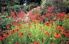 helen dillon garden ireland - Google Search