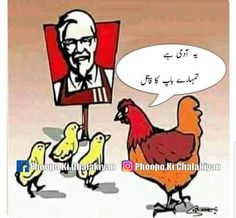 Funny Pix, Very Funny Jokes, Funny Posts, Funny Pictures, Funny Memes, Hilarious, Funny Quotes In Urdu, Jokes Quotes, Happy Quotes